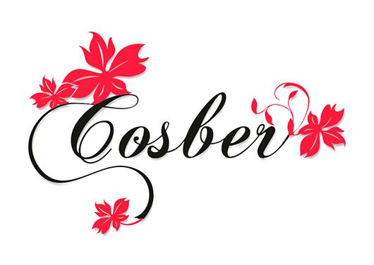 Cosber Store